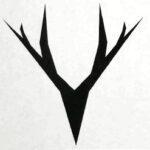 Stag antlers - Rich Energy
